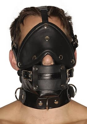 Blindfold Muzzle and Gags Headharness