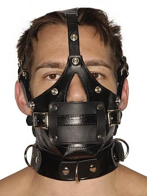 Muzzle Gag headharness without blindfold