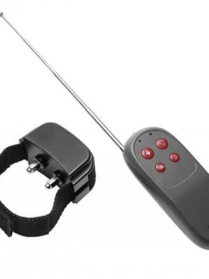 Remote Electric Shock Cock Ring