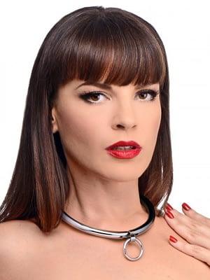 Combination Locking Slave Collar With Model