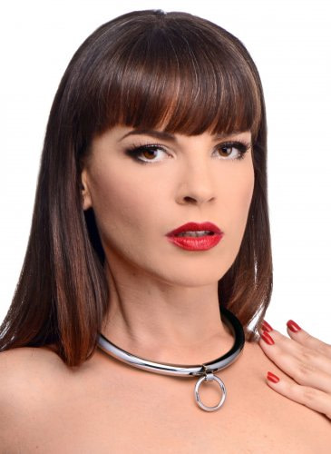 Combination Locking Slave Collar With Model
