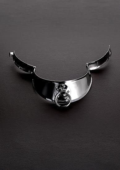 Stainless Steel Slave Collar Unlocked