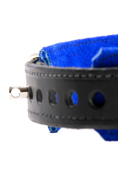 BDSM Slave Collar Close Up Of Locking Buckle