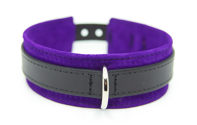 Large & Not Incharge Submissive Training Collar Purple