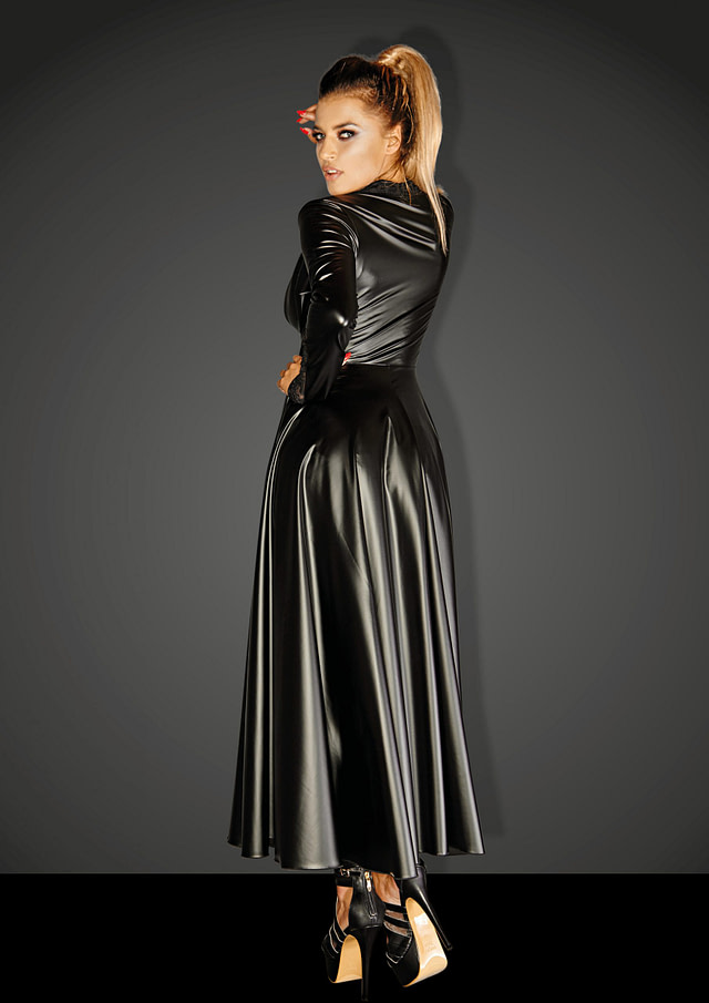 Dangerously Risque Gown BACK