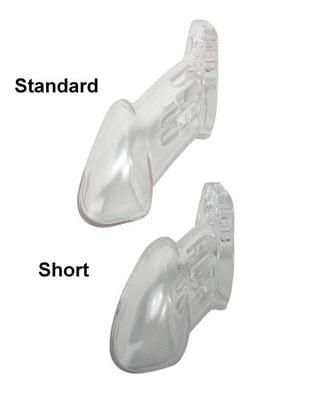 cb6000s Male Chastity Device Small