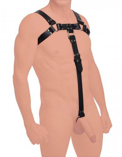 Bull Dog Body Harness